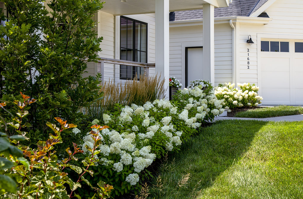 Luxurious and Eco-Friendly Landscape Designs